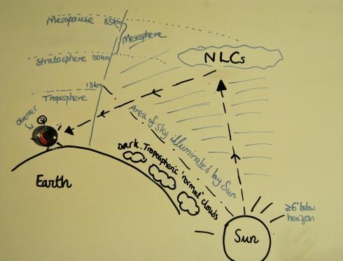 NLC diagram