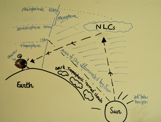NLC diagram