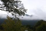 Misty mountains of Hakone.
